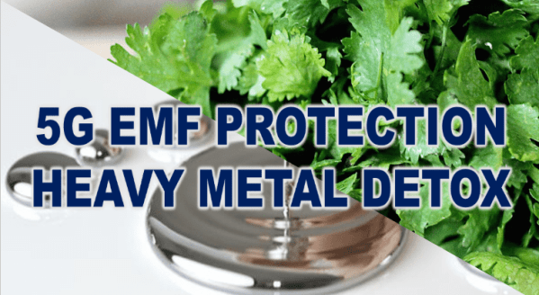 5G-EMF-Protection-Heavy-Metal-Detox