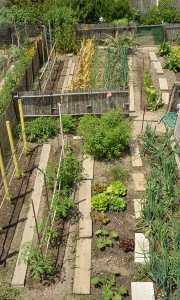 Portes ouvertes des jardins partagés. 15ème anniversaire @ Jardins partagés Ile de Ratonneau