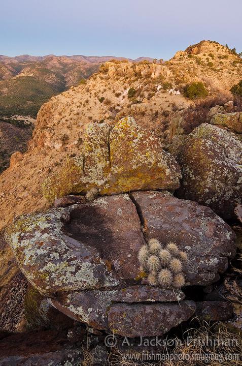 Dawn on Lake Mountain in New Mexico's Black Range