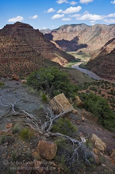 Desolation Canyon, Utah, June 2010.