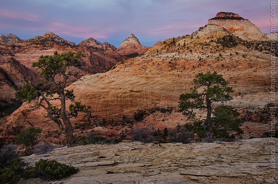 Dawn over the East Temple and Bridge Mountain, Zion National Park, Utah