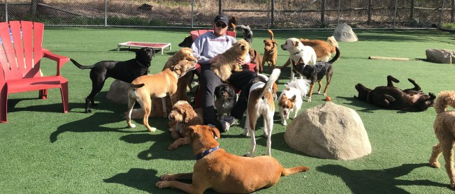 Pack hangs out with great Frisky Dogstaff