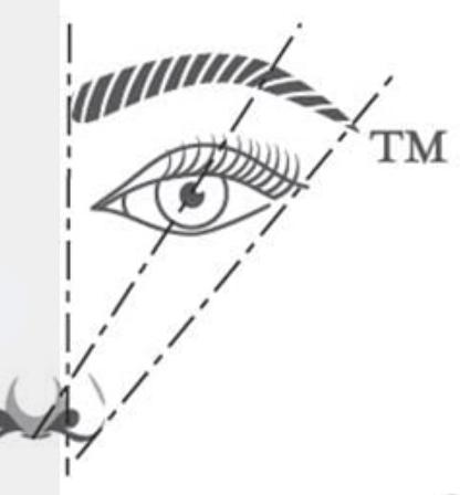 eye golden ratio - épilation sourcil régles d'or