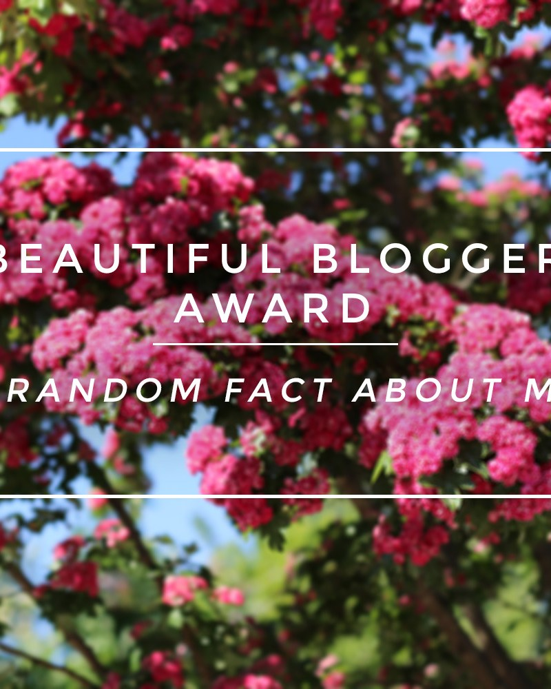 Beautiful Blogger Award Tag 7 facts about me