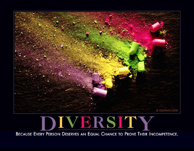 diversitydemotivator