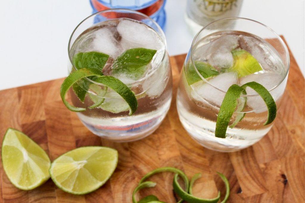 Gin og tonic med et twist
