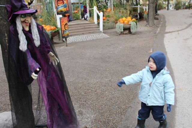 tivoli, halloween-i-tivoli, halloween, graeskar, heks