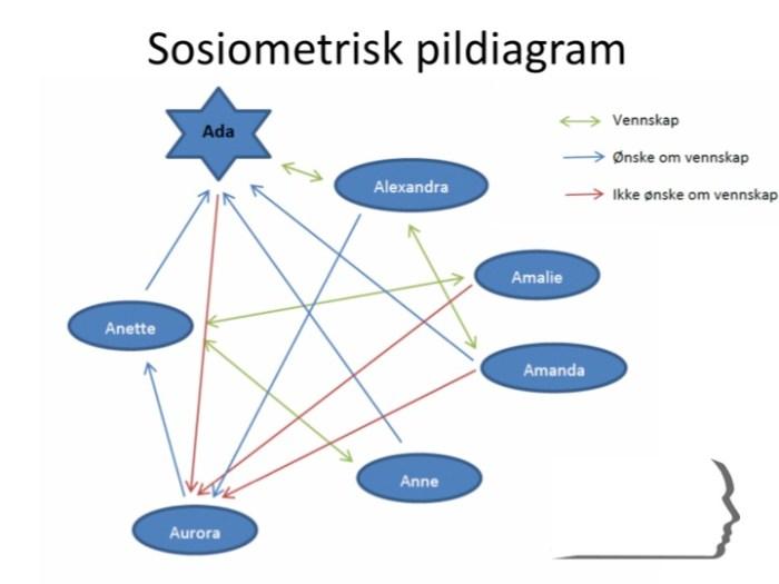 Sosiometrisk pildiagram
