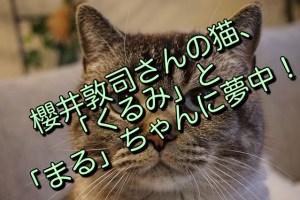 櫻井敦司さんの猫、「くるみ」と「まる」ちゃんに夢中!