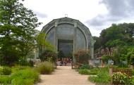 greenhouse in the Jardin des Plantes Paris
