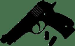 Gun、拳銃