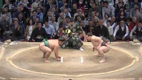 大相撲の立会い(試合開始)