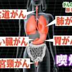 禁煙条例が東京でも
