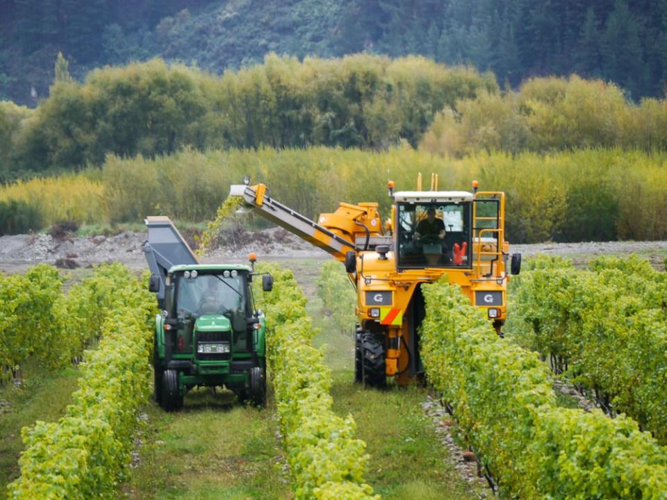 harvester Loddon-1060390