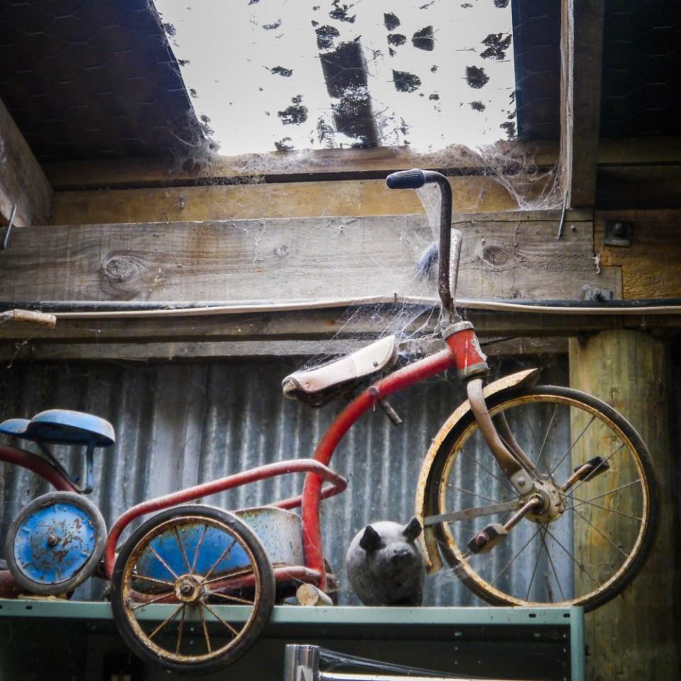 trike bike-1090246