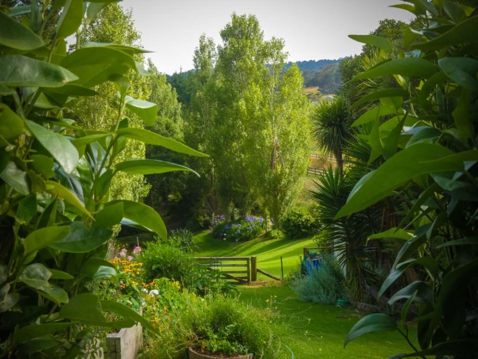 hedge-view-1110144