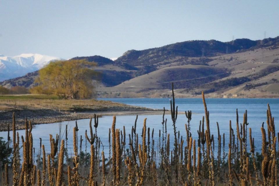lake dunstan-1160874