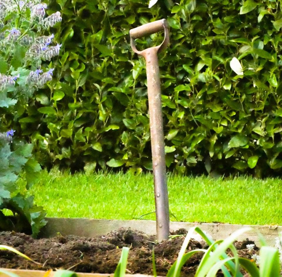 spade action-1190250