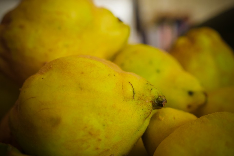 home grown organic quince