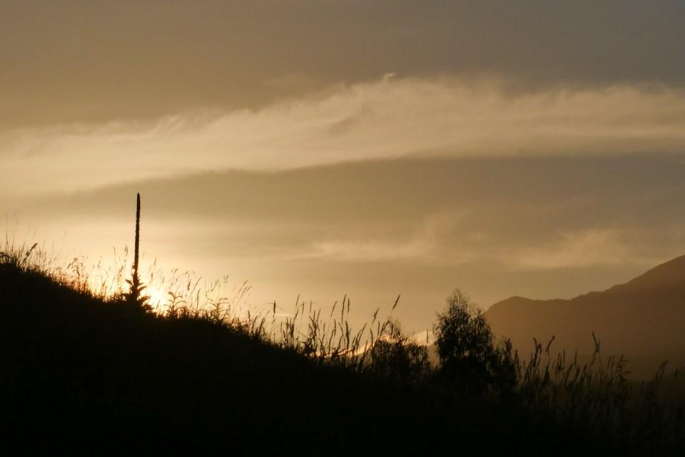 sunset in marlborough