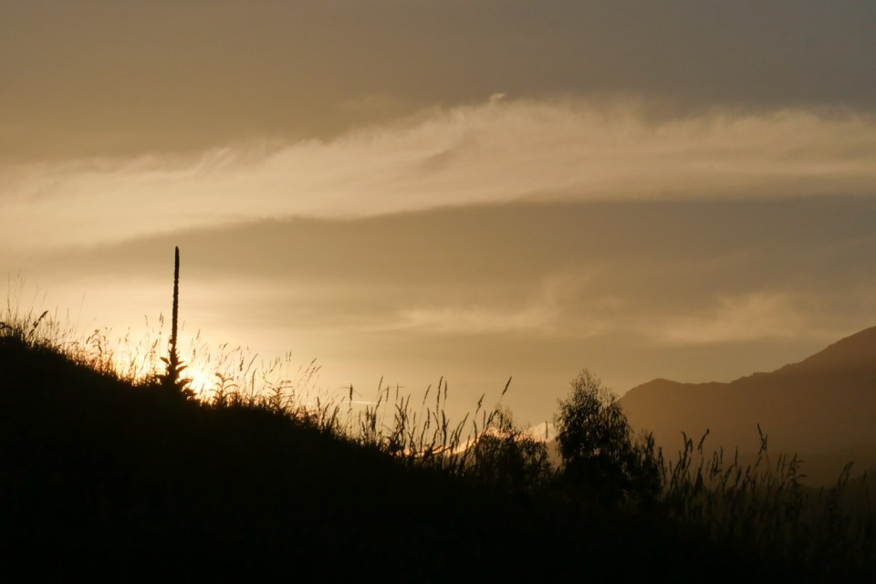 sunset in marlborough