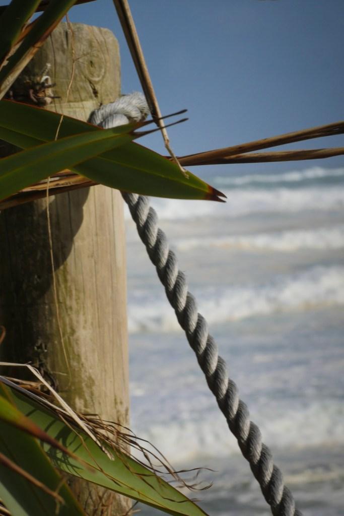 fence at muriwai-1250216