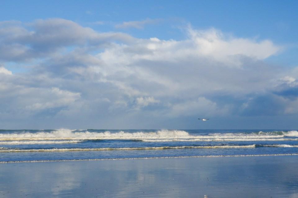 Muriwai beach-1260334