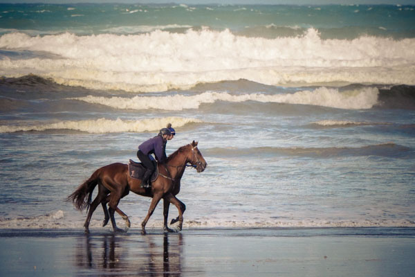 riding-at-muriwai-1280247