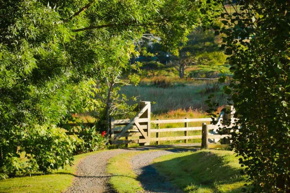 gates-to-frogpond-1290312