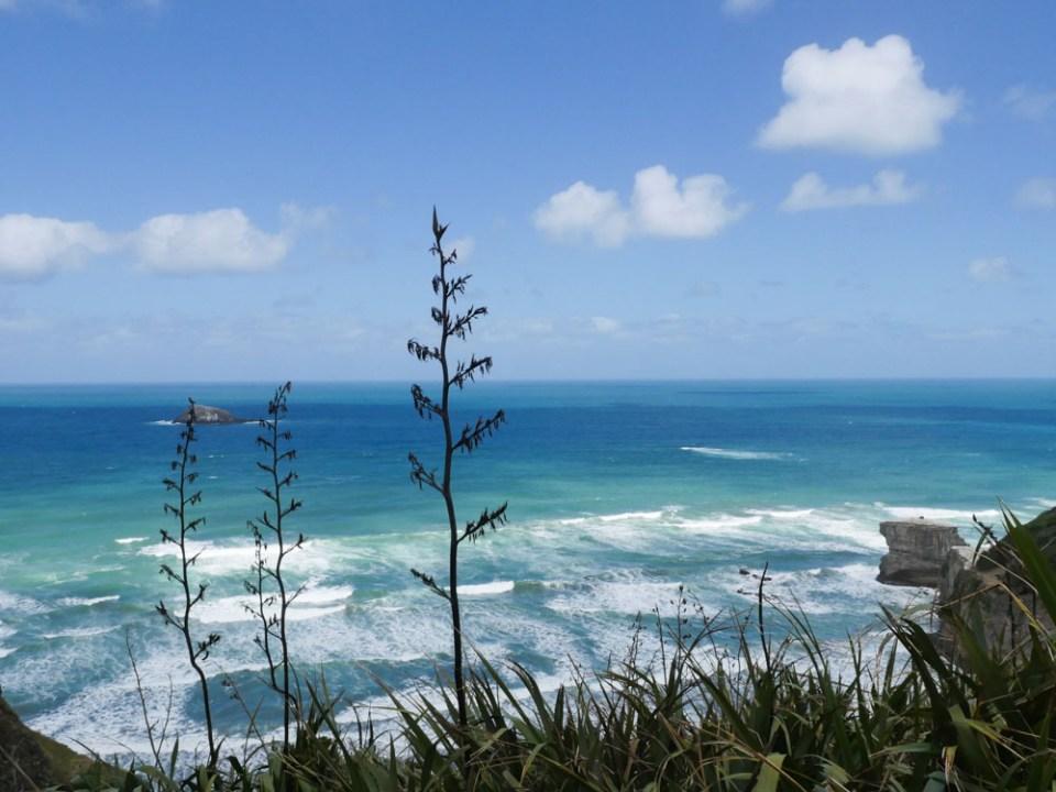 maori_bay-1290433