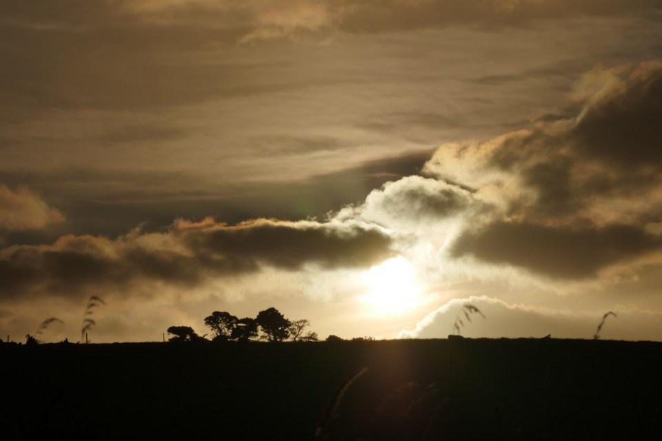 twilight-1290359