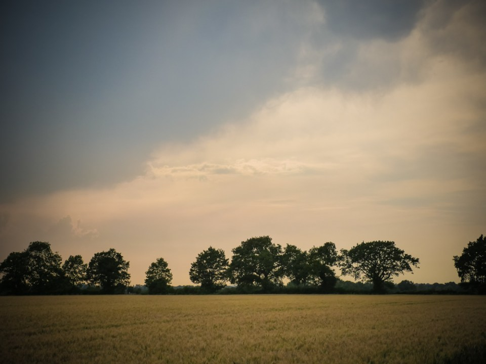 North Essex