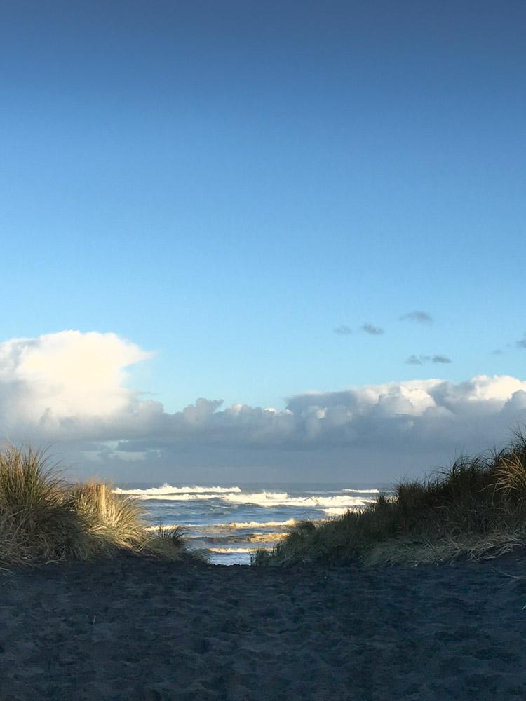 Muriwai beach winter