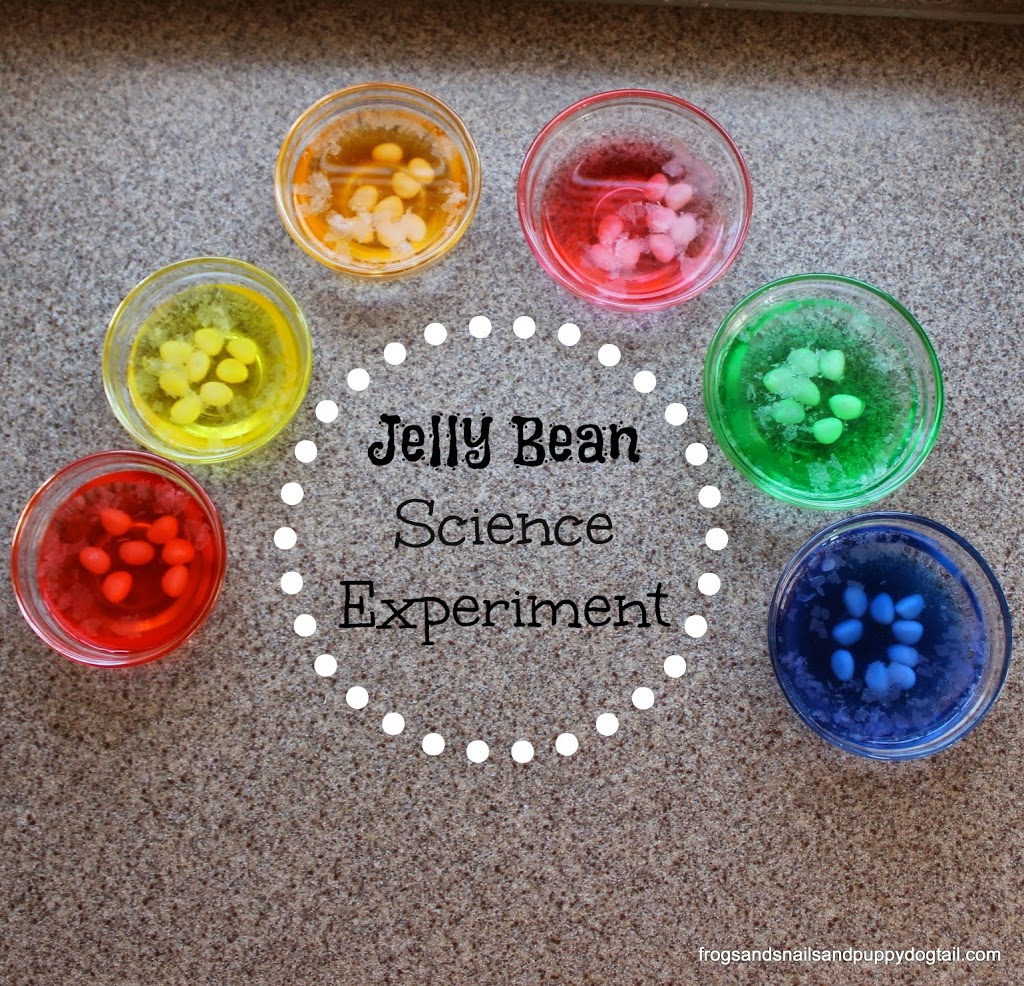 Creative Ways To Play Craft And More With Jelly Beans