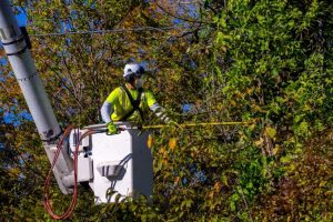 Detroit's Grids More Susceptible to Outage Problems