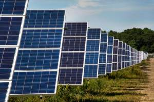 Renewable Energy Projects on Public Land have been Cut Down