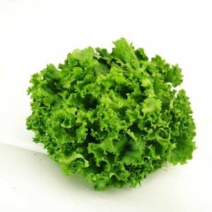 салад ,,фризэ,, с франц.перевода , значит - ,,кудрявый,, - зеленый