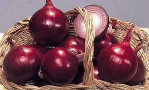 Красный лук для лечения печени , архив 2011 г.