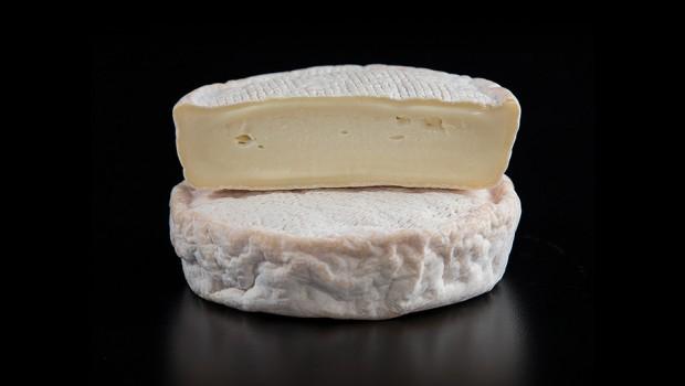 fromages du quebec