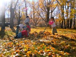 Leaf pile!!