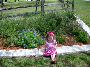 Bluebonnets and a Lily too!