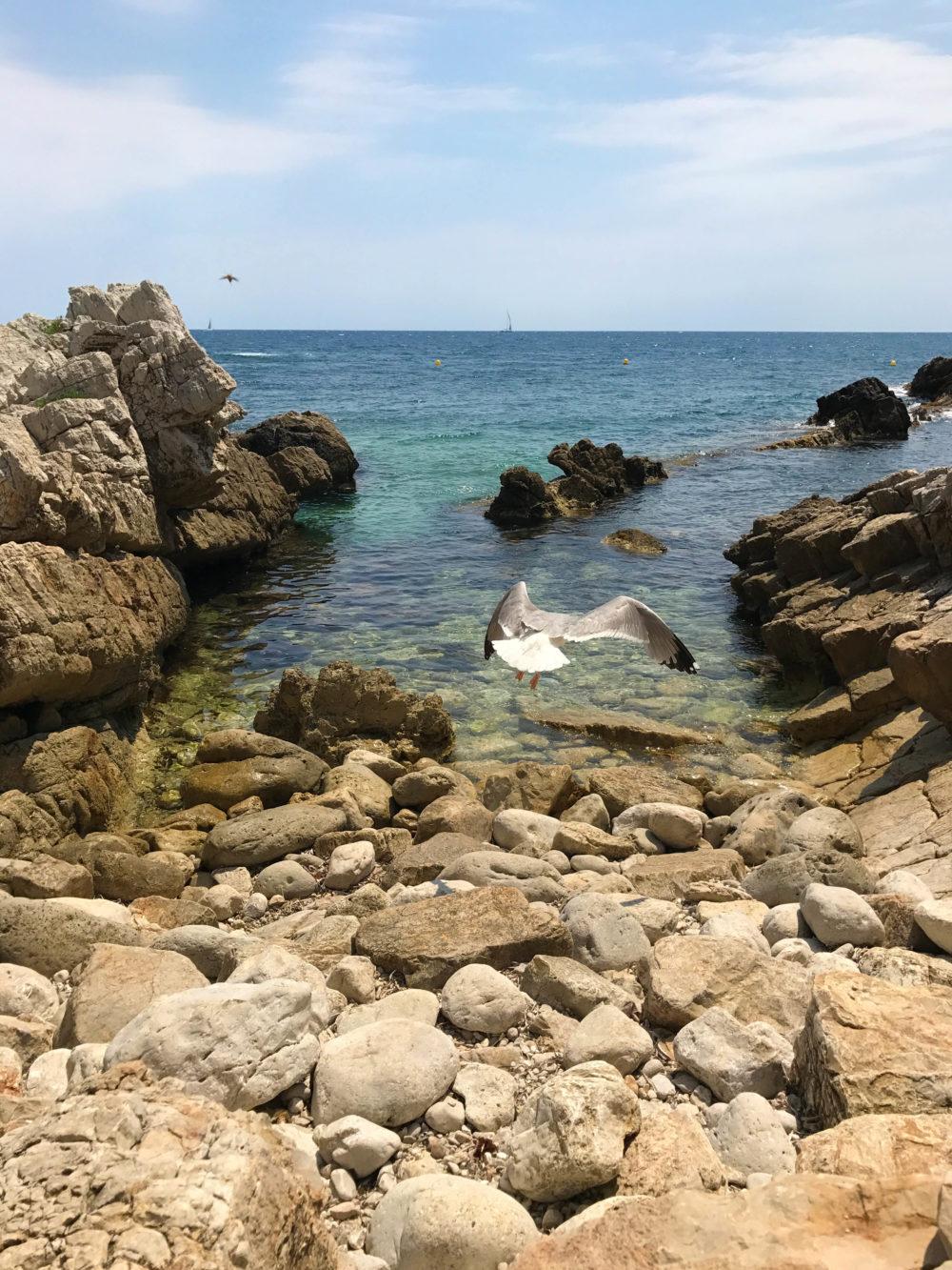 crique plage villa eilenroc cap d'antibes