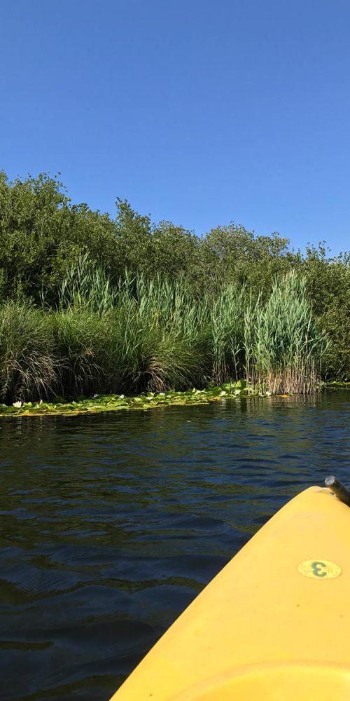 balade-kayak-corse