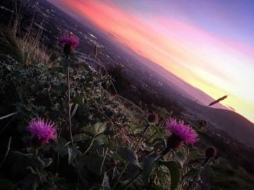 Autumn sunset in Cave Hill - Belfast