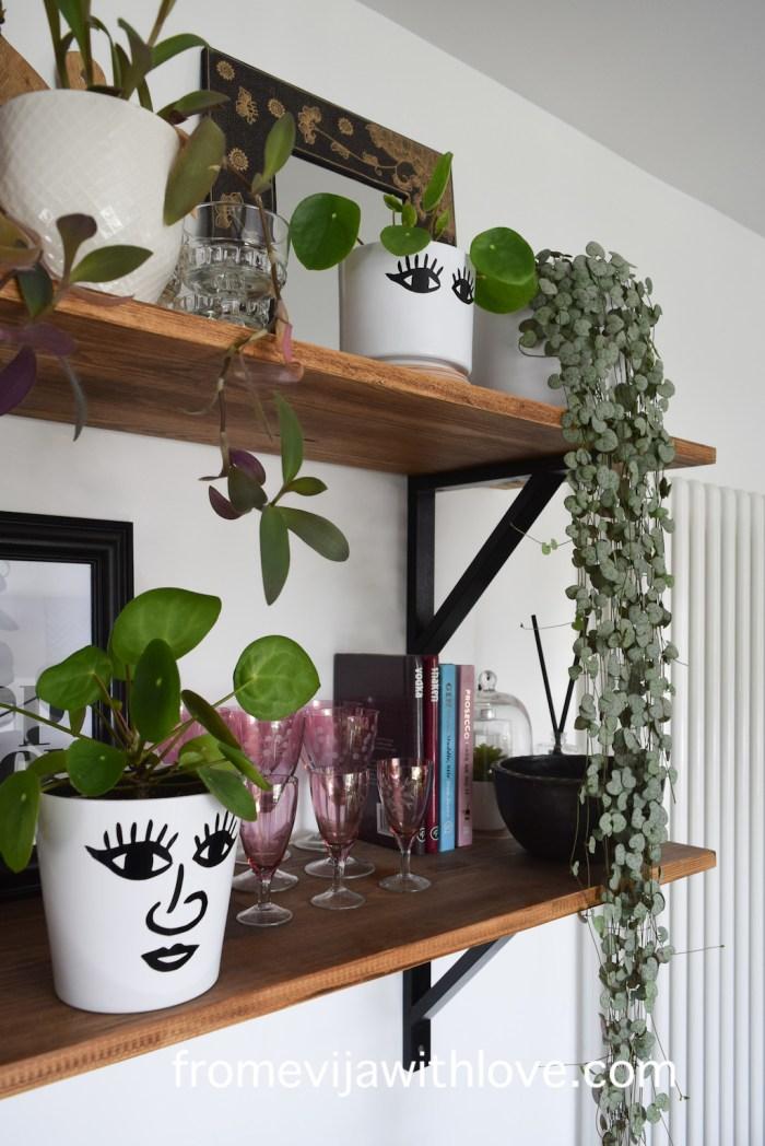 shelves with glasses and plant pots DIY Cricut