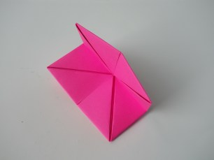 Cootie Catcher 16