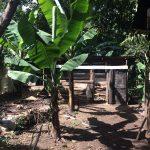 Before: chicken coop