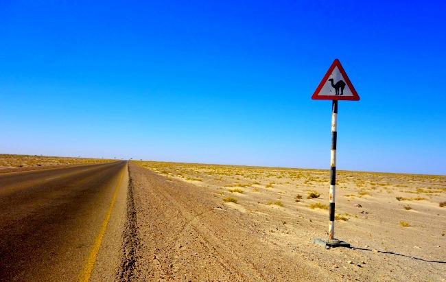 Camel sign in Oman