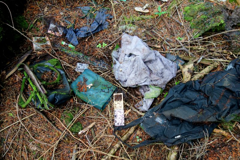Our Journey to Suicide Forest – Aokigahara45
