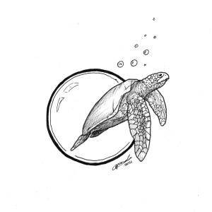 Turtle-y Amazing
